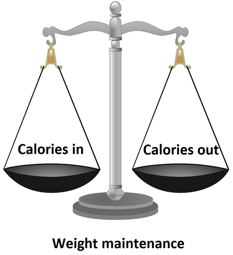 Balance showing when calories in = calories out weight is maintained